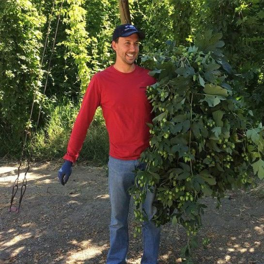 Joel VandenBrink With Some Hop Vines