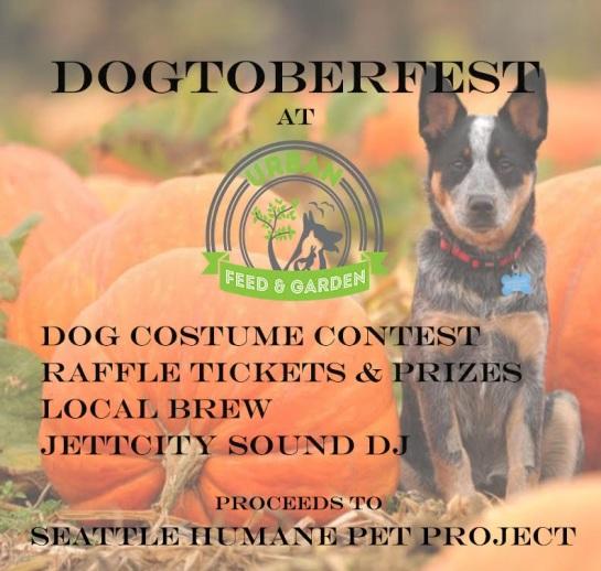dogtoberfest1